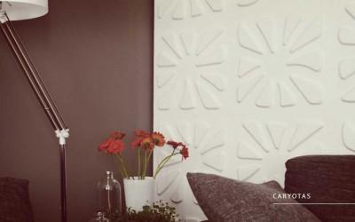 Caryotas 1