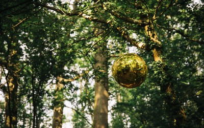 Disco Ball credit Heather Shukar